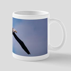 Galapagos albatross Mug