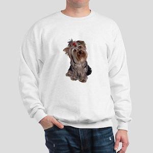 yorkie portrait Sweatshirt