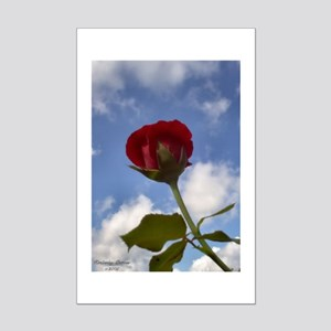 Rose bud in Texas  Mini Poster Print