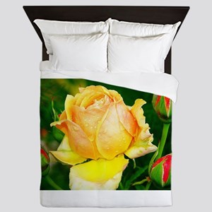 Beautiful Yellow and Red Roses Queen Duvet