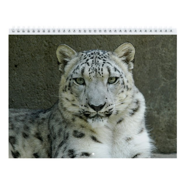 how to change microhpohone stettings in snow leopard