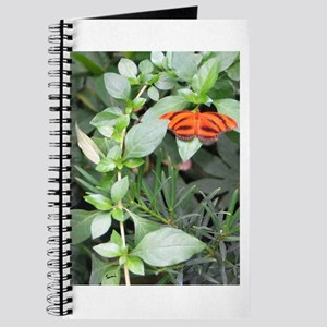 Orange Tiger Butterfly Journal