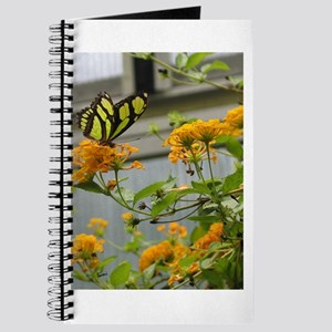 Yellow Butterfly Journal