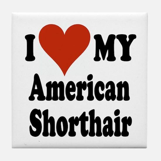 American Shorthair Tile Coaster