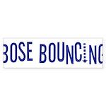 Bose Bouncing Bumper Sticker (10 pk)