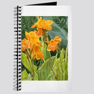 Orange Canna Flowers Journal