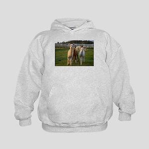 2009_13sep_0001 Sweatshirt