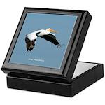 Great White Pelican Keepsake Box