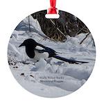 Black Billed Rocky Mountain Magpie Round Ornament