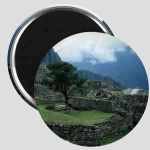 Machu Picchu Tree Magnet