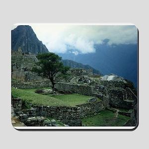 Machu Picchu Tree Mousepad