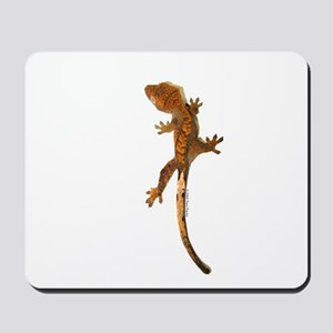 """Crested Gecko Climbing"" Mousepad"