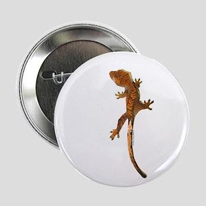 """""""Crested Gecko Climbing"""" 2.25"""" Butt"""