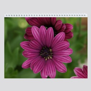 Scenes from Nature Wall Calendar