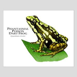Phantasmal Poison Dart Frog Small Poster