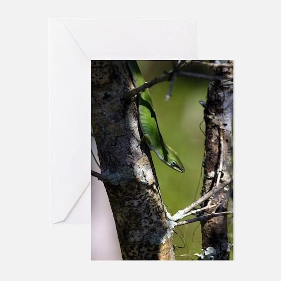 LOUISIANA GREEN ANOLE - Greeting Cards (Pk of 10)