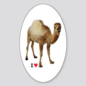 CAMEL TOE - Sticker
