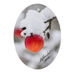 "2008 Ornament Titled: ""Frosted Apple&"