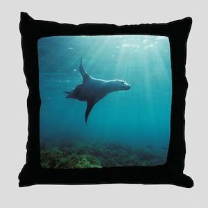 Sea Lion in Sunburst Throw Pillow