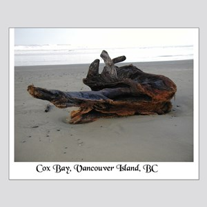 Driftwood 3 Small Poster