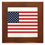 American Flag Stuff Framed Tile