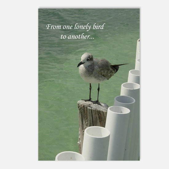 Lonely Bird Postcards (Package of 8)