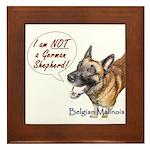 I'm not a German Shepherd! Framed Tile