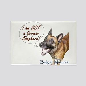 I'm not a German Shepherd! Rectangle Magnet