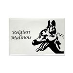 Malinois Silhouette Rectangle Magnet (10 pack)
