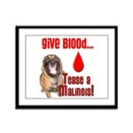 Give Blood, Tease a Malinois Framed Panel Print