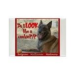 Malinois Mallomar Cookie Rectangle Magnet