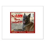 Malinois Mallomar Cookie Small Poster