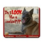 Malinois Mallomar Cookie Mousepad