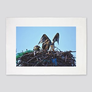 Sheffield Island Osprey Family 5'x7'Area Rug