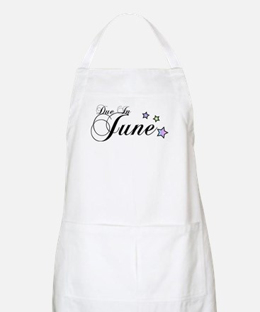 3 Rainbow Stars Due June BBQ Apron