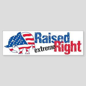 Raised Ext Right Sticker (Bumper)