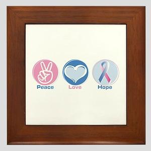 Peace Love BlPk Hope Framed Tile