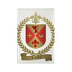 LANDRY Family Crest Rectangle Magnet (100 pack)