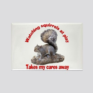 Squirrels at Play Rectangle Magnet