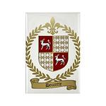 DOUCETTE Family Crest Rectangle Magnet (100 pack)
