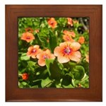 Scarlet Pimpernel Framed Tile