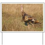 Wild Turkey Yard Sign