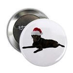 Black Lab Christmas 2.25