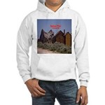 Bailout This! Hooded Sweatshirt