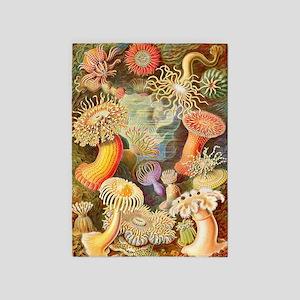 Sea Anemones, Ernst Haeckel 5'x7'area Rug