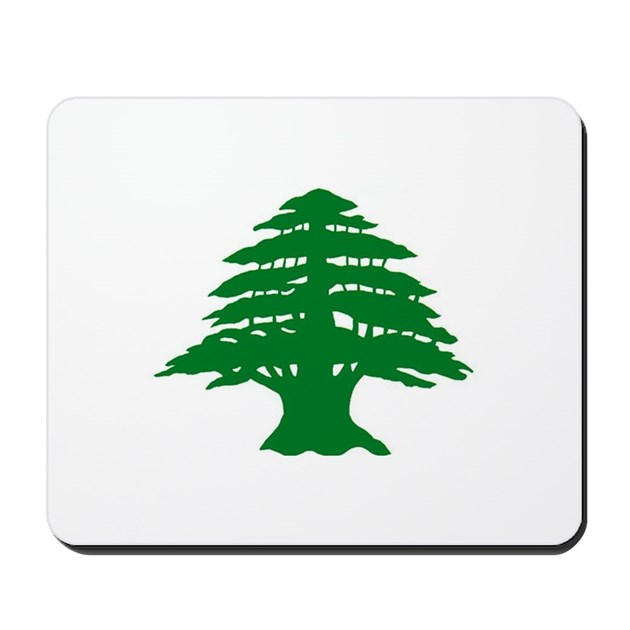 Discount coupons lebanon