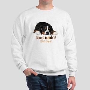 Sneak A Peek Sweatshirt