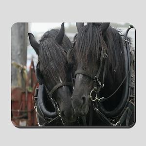 Percheron Draft Horses Mousepad