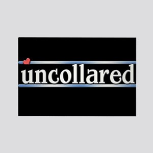 Uncollared Rectangle Magnet