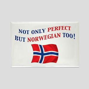Perfect Norwegian 2 Rectangle Magnet